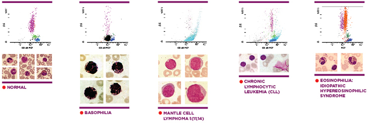 CytoDiff-data-compared-cell-images